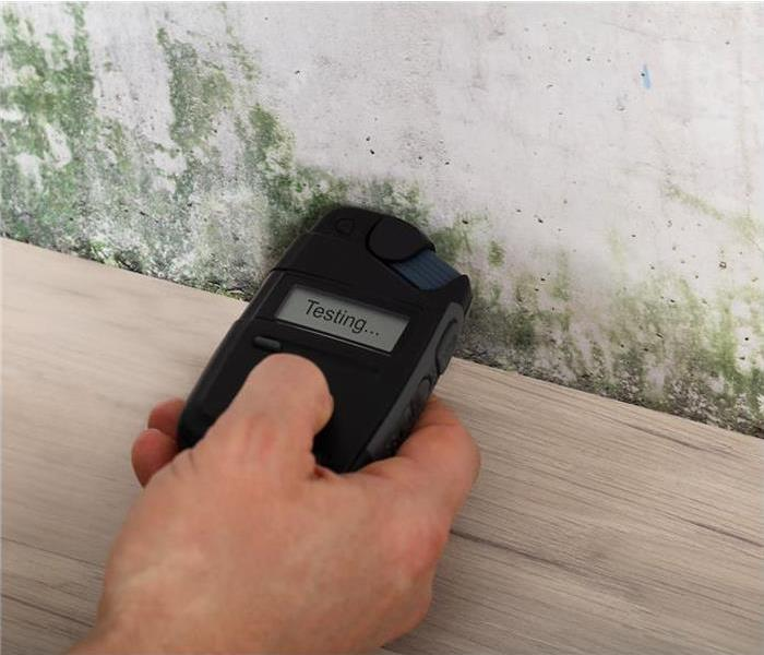 Person hand measuring the wetness of a moldy wall