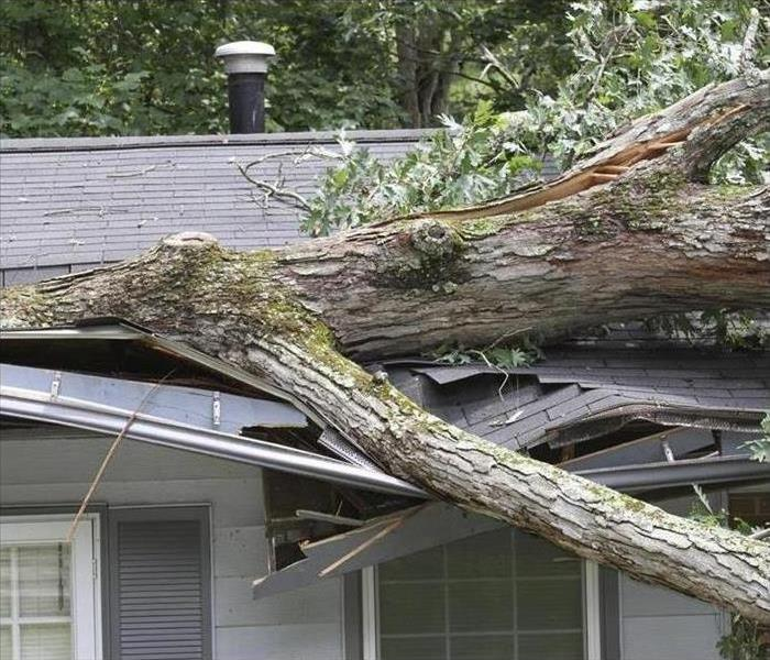 Storm Damage Early Responses Save Roofs