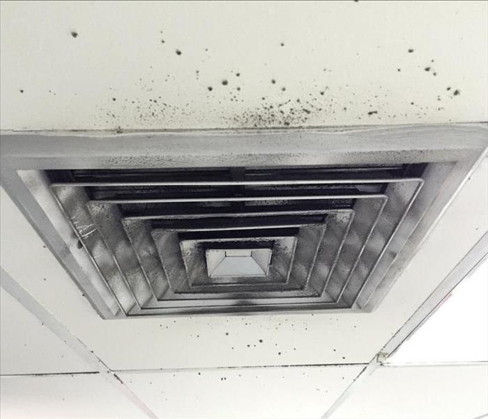 Mold around air ducts