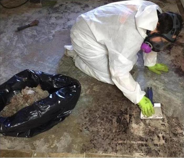 Mold Remediation Houston Home Health: Getting Rid of Mold and Mildew in Your Home